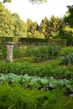 ~Doyle Herman Design Associates Landscape Design