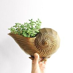 This brass nautilus shell vase feels like it's straight out of a fairy tale - I fell in love the moment I spotted it! Talk about shell-shocked! :heart_eyes::shell: Just listed this morning - link to shop in my bio!