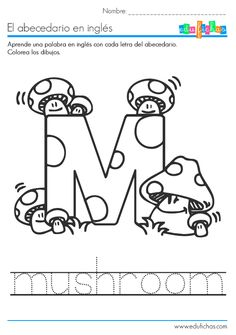 Phonics Long Vowels, Compound Words, and Contractions