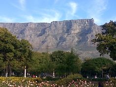 Table Mountain, Cape Town, Wonders Of The World, Mount Rushmore, Most Beautiful, Gardens, Mountains, Pretty, Nature