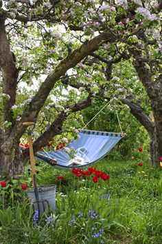 Spring in the Country - Take a break in one of the hammocks nested under the trees....
