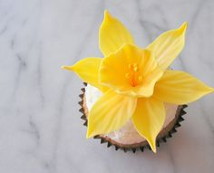 most amazing cupcakes by Tam Mabley