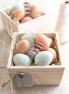 Organic eggs nesting in small wooden crates~adorable easter display! Hoppy Easter, Easter Bunny, Easter Eggs, Small Wooden Crates, Wooden Boxes, Organic Eggs, Diy Ostern, Easter Table, Egg Shells