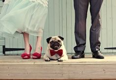 Wedding Pug (love the bride's red shoes and the pug's matching red bowtie! Wedding Humor, Wedding Blog, Wedding Styles, Pug Wedding, Wedding Ideas, Trendy Wedding, Wedding Planning, Dogs In Wedding, Wedding Bride