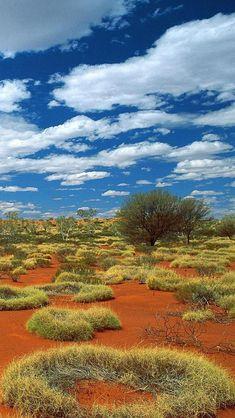 Little Sandy Desert, Bioregion, Western Australia, Australia, Europe, Geography, Attraction   iPhone wallpapers HD