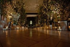 Beautiful entrance to wedding reception lined with Birch trees and pots of white delphinium smothered with t-lights and storm lanterns.  Design by Wildabout
