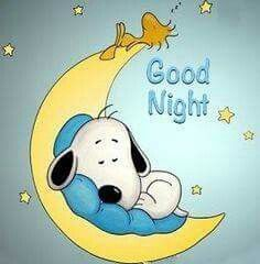 Snoopy and Woodstock Good Night Greetings, Good Night Wishes, Good Night Sweet Dreams, Good Night Quotes, Snoopy Images, Snoopy Pictures, Charlie Brown Quotes, Charlie Brown And Snoopy, Snoopy Quotes