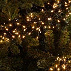 Chasing Cluster LED 240 Light String Lighting The Seasonal Aisle Cluster Christmas Lights, Christmas Tree Yellow, Best Christmas Lights, Cluster Lights, Icicle Lights, Led Fairy Lights, Christmas Decorations For The Home, Christmas Night, Holiday Lights