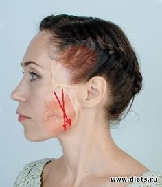 Корректируем овал лица: динамическая и статическая растяжка жевательных мышц