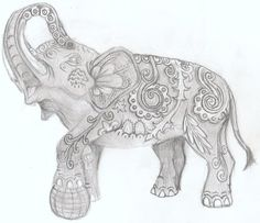 elephant?