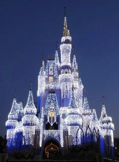Disney castle <3 This is what the castle looked like when Tom proposed!