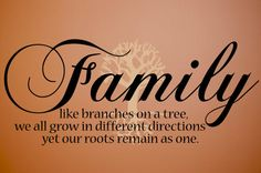 Discover and share Family Tree Quotes Or Poems. Explore our collection of motivational and famous quotes by authors you know and love. Family Tree Quotes, Family Poems, Family Tree Wall Decal, Family Sayings, Wall Quotes, Me Quotes, Qoutes, 2015 Quotes, Tree Stencil For Wall