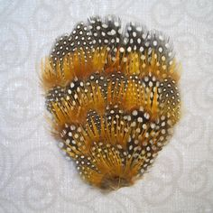 1 Guinea and Golden Pheasant Feather Pad. $2.75, via Etsy.