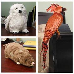 Harry Potter Pet Plush Set