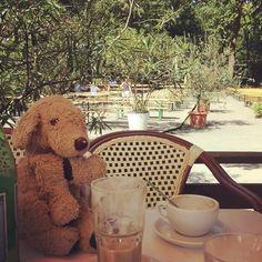 I love this combination... . . # #coffeetime #lunch #cafeamneuensee #ilovecoffee #coffeejunkie #berlinstyle #dogsofberlin #lovelaughlobilat #plushiesofinstagram #plushielife #kuscheltier