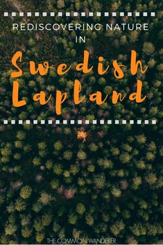 We didn't expect to find a love story in Swedish Lapland - yet there's an unmistakable bond between man and wild in the Arctic North. This is what we discovered during our week exploring the pristine nature of the area | Swedish Lapland | Lapland | nature in Lapland | Swedish Lapland nature | Sweden // #swedishlapland #sweden #lapland #autumn #fall #nature