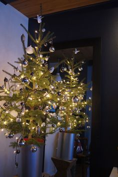 Christmas tree glow.