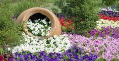 Tipos de macetas grandes para el jardín y ventajas