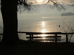 Traunsee Outdoor Furniture, Outdoor Decor, Austria, Spaces, Celestial, Sunset, Park, Vacation, Parks
