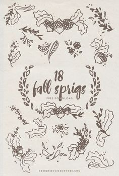 Fall Sprigs - FREE Clip Art - Designs By Miss Mandee. Use these fall doodles to give your design or photo some fun fall flair. Includes 18 laurel, acorn, branch, leaf, and sunflower motifs. Fall Clip Art, Free Printable Art, Little Doodles, Little Falls, Chalkboard Art, Art Designs, Design Elements, Hand Lettering, Play Therapy