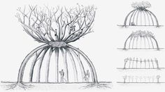 Aptly titled The Patient Gardener, the garden structure will be shaped from a circle of ten Japanese cherry trees that will be bent, pruned and woven as they grow.
