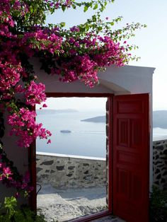Vangelis Paterakis is a professional hotel, food photographer based in Athens, Greece and travels all over the world for his assignments. Bougainvillea, Santorini Greece, Athens Greece, Places To Travel, Places To See, Wonderful Places, Beautiful Places, Adventure Is Out There, Greek Islands