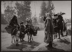vintage-bw-photos-of-tunis-tunisia-late-19th-century-18