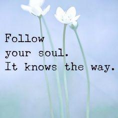❤️  Follow your soul...