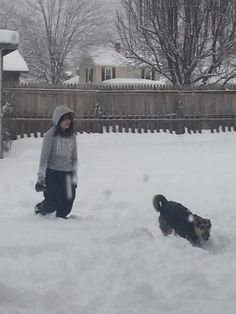 Tonya Dauria-Martin, Elkton 	 Grace Martin and Jägermeister playing in the snow in Elkton :) #WHSVsnow