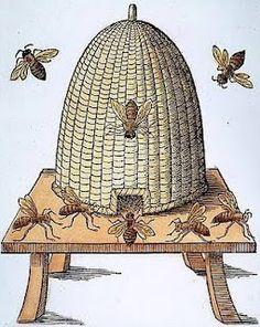 ...bee.