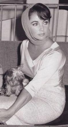 Η Liz με το Yorkie της...