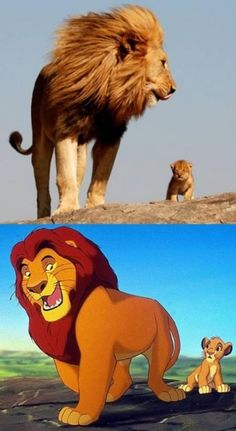 40 Real-Life Iconic Cartoon Character Doppelgangers That Will Have You Doing A Double-Take - bemethis Simba Y Nala, Roi Lion Simba, Simba Rey Leon, Simba Disney, Old Disney, Disney Lion King, Disney Art, Baby Animals, Funny Animals