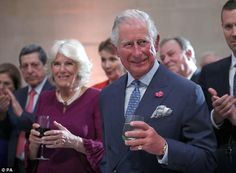 Pin by joan ellis on diana and charles pinterest charles and camilla visit google arts culture projects in london publicscrutiny Choice Image