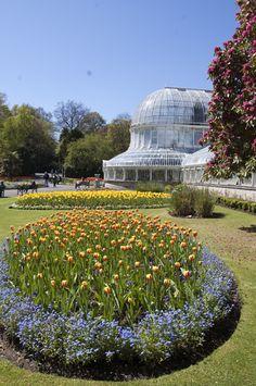 Belfast Botanical Gardens, Belfast, Northern Ireland  (May 8, 2010)