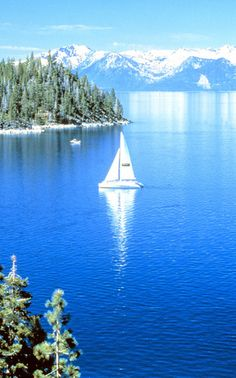 Owned 3 different sailboats at Lake Tahoe, what a beautiful place to wake up in the morning!!