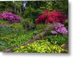 Got Print, Any Images, Your Image, High Gloss, Bloom, Rainbow, Garden, Metal, Artwork