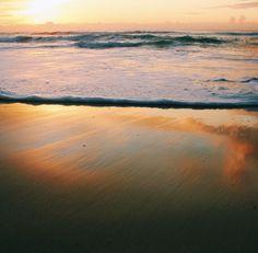 Golden hour ✨