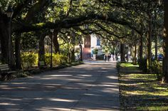 """""""There are vaster and wealthier cities, but for architectural simplicity, for an indescribable charm about its streets and buildings, its parks and squares, there is but one Savannah. Without a rival, without an equal, it stands unique."""" --Timothy Harley, a minister who visited Savannah late in the nineteenth century"""