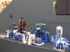 Scottsdale Civic Center Library | Crochet Coral Reef