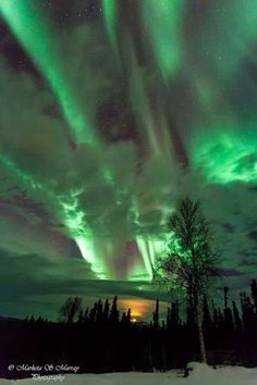 Aurora Borealis - Alaska - Marketa.