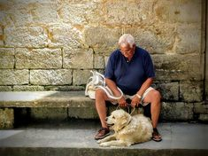 Are you a senior citizen or retiree? Here are 30 part time jobs for seniors and work from home jobs for retirees. Dog Illnesses, Education Canine, Part Time Jobs, Losing A Dog, Pet Loss, Old Dogs, Family Dogs, Service Dogs, Work From Home Jobs