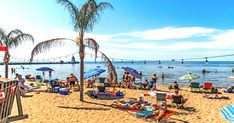 This Ontario Beach Town Is The Perfect Destination For A Summer Escape featured image Weekend Trips, Weekend Getaways, Day Trips, Dover Beach, Ontario Beaches, Beach House Restaurant, Florida Palm Trees, Tropical Beaches, Beach Town