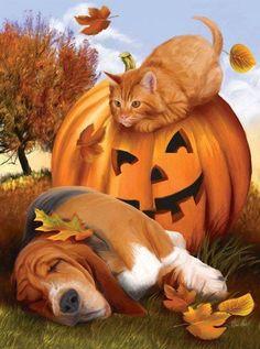 """ by Thomas Wood ~ autumn ~ carved pumpkin ~ cat ~ basset hound . Fröhliches Halloween, Halloween Pictures, Fall Pictures, Holidays Halloween, Vintage Halloween, Cat Dog, Puppy Party, Dog Art, Cute Animals"