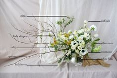 Kristen Caissie of Moon Canyon Design shares a beautiful floral encyclopedia inspired by the subtle colors of spring. Learn how to create your own today!