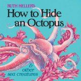 Hanging out with an octopus | Teach Preschool