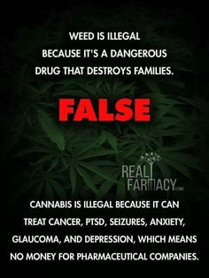 Cannabis Positive Quotes-Weed (Marijuana) is only illegal because it has medicinal properties. Further research is needed. Medical Benefits Of Cannabis, Medical Marijuana, Marijuana Facts, Weed Facts, Knee Pain, Natural Medicine, Drugs, The Cure, At Least