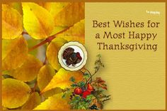 http://holiday.saveatreecards.com/step1/thanksgiving_anim_11