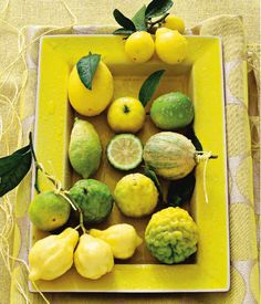 gorgeous citrus fruits