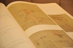 Copia del Codice Vinciano