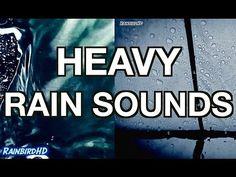 ☁☔ Ï Łṏⱴẻ Ǟ Ŕǎìȵẙ Ďǎẙ ֆ Ǟ Ŕǎìȵẙ ♑ìĝђƭ ☁☔ ~ 'Rain' 2 Hours of Heavy Rainfall and Thunder Sounds | High Quality Sleeping Sounds - YouTube